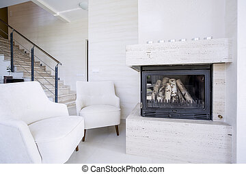 Living room with fire place - Modern living room with fire...