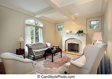 Living room with fireplace - Living room in luxury home with...