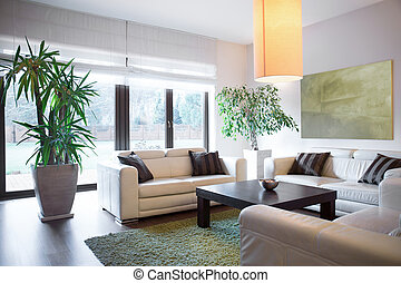 Living space inside house - Horizontal view of living space ...