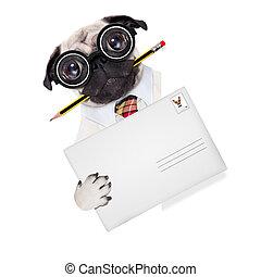 livraison, chien, poste, courrier