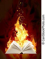 livre, brûler, magie
