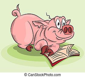 livre, cochon