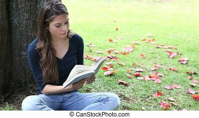 livre, femme, parc, lecture