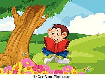 livre, lecture, jardin, singe