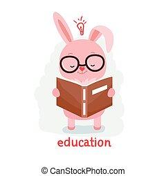 livre lecture, lapin