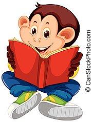 livre, lecture, singe