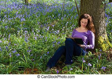 livre, printemps, campanules
