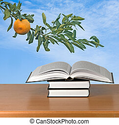 livres, bureau