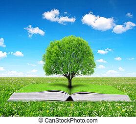livro, árvore, natureza