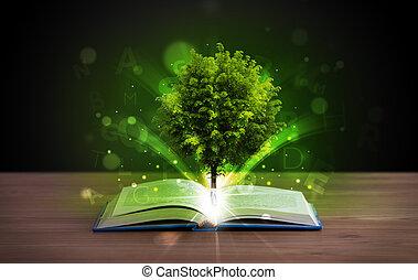 livro aberto, com, mágico, árvore verde, e, raios luz