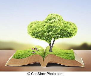livro, abertos, natureza
