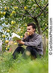 livro, adolescente, pomar, leitura