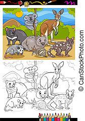 livro, coloração, animais, caricatura, marsupiais