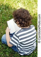 livro leitura, criança