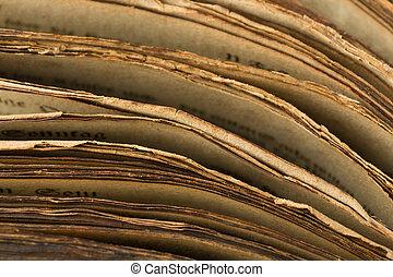 livro, medieval, bordas