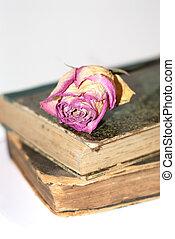 livro, rosa