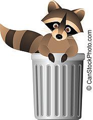 lixo, guaxinim, dentro, lata