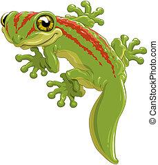 Lizard - Cute green lizard a gecko