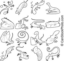 Lizard type animals icons set, outline style