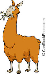 Llama chewing on a white background vector illustration