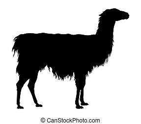 Llama - Abstract vector illustration of an llama silhouette