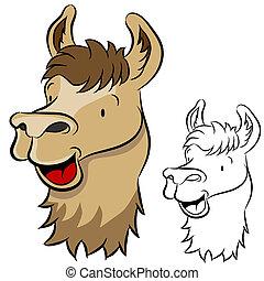 Llama Face - An image of a llama face.