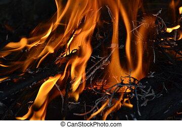 llamas, de, fuego
