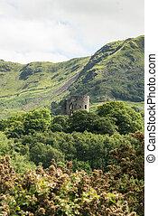 llanberis, północ, drzewa, przez, dolbadarn, walia, zamek,...