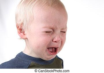 llanto, frustrado, niño pequeño, blanco