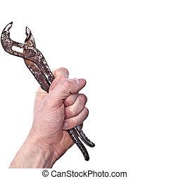 llave inglesa, en, un, cubrir, mano, -, totalmente, aislado, blanco, plano de fondo