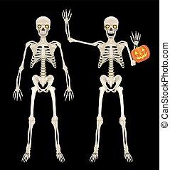 lleno, esqueleto, cuerpo, plano de fondo, negro