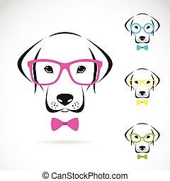 llevando, labrador, perro, vector, imágenes, anteojos