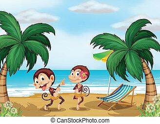 llevando, monos, dos, hawaiano, traje