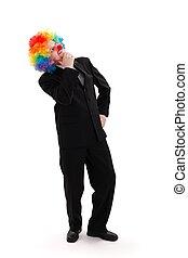 llevando, peluca, empresa / negocio, colorido, payaso, hombre
