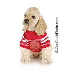 llevando, perrito, camisa, rojo