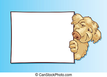 Shaggy dog with card