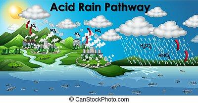 lluvia, ácido, diagrama, camino, actuación