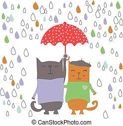 lluvioso, dos día, gatitos