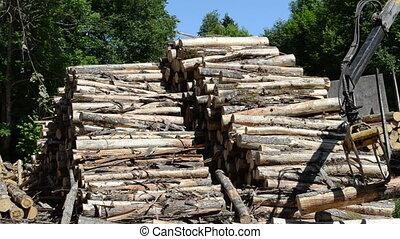 loader crane forestry log - Closeup of heavy loader crane...
