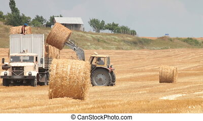 loading hay bales in  truck by tractor