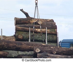 Loading logs into cargo vehicles. Wood processing and...