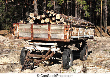 Loading logs of trees in the forest