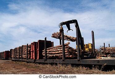 Loading Logs on a Railcar - Crane loading cut logs on a...