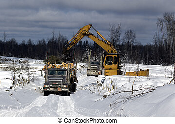 Loading spruce trees onto a logging truck in boreal forest cutblock during winter