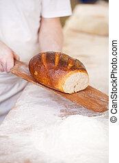 Loaf of freshly baked crusty bread
