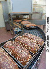 Loafs of bread in the factory - Loafs of bread being made in...