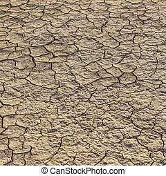 loam in a saline basin dried and cracked