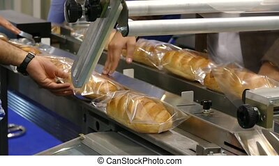 loaves of bread on a conveyor
