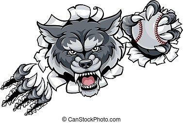 lobo, basebol, mascote, quebrar, fundo