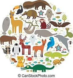 lobo, color azul - pagar, lama, jacinto, lagarto, papagallo, mapache, jaguar, vector, booby, sello, américa, delfín, murciélago, maned, perezoso, tucán, tortuga, armadillo, mono, sur, manatee, capybara., venado, cocodrilo, pingüino, boa, oso hormiguero